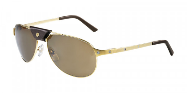 Cartier CT0074S Sunglasses
