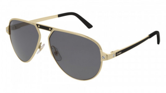 Cartier CT0101S Sunglasses
