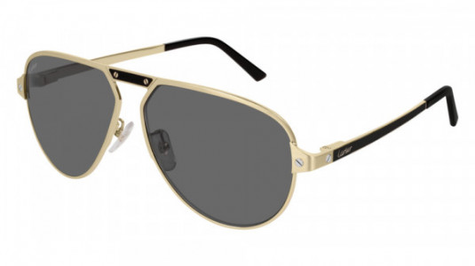 Cartier CT0101SA Sunglasses