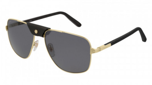 Cartier CT0097S Sunglasses