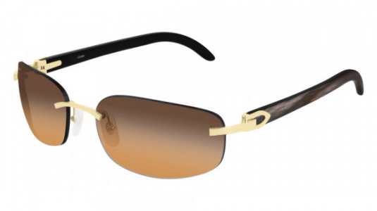Cartier CT0020RS Sunglasses