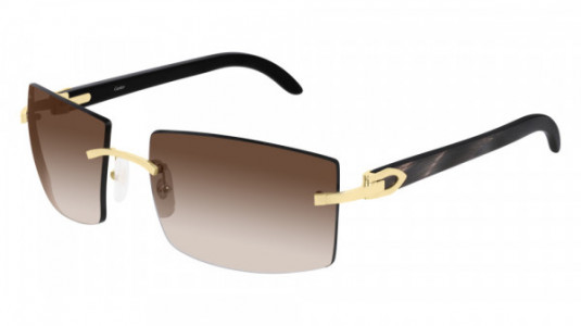 Cartier CT0021RS Sunglasses
