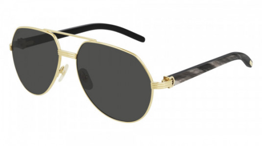 Cartier CT0272S Sunglasses